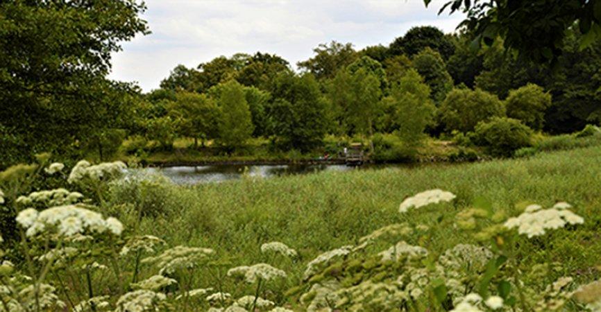 La forêt de Bondy classée en forêt de protection.