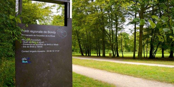 La forêt de Bondy