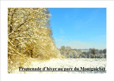 Promenade d'hiver au parc du Montguichet
